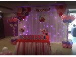 Best Balloon Modeling Decoration Theme