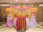 Best Princess Backdrop Decoration