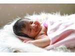 New Born Baby Boy Photoshoot