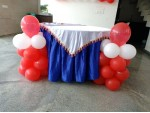 Basic Ballon Backdrop And Piller Decaration
