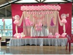 Baby Pink Theme Decoration