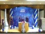 Blue Frozen Theme Decoration