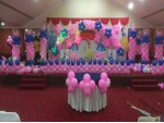 Elegant Pink Princess Theme Decoration