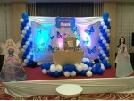 Blue Butterfly Theme Decoration