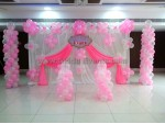 Light Pink Backdrop Decoration