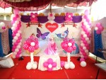 Best Butterfly Theme Decoration
