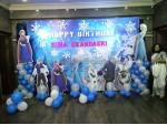 Best Value Frozen Theme Decoration
