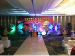 Grand 6ft Butterfly Theme Decoration