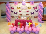 Balloon Modelling And Butterfly Decoration