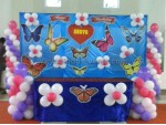 Drape And Butterfly Theme Decoration