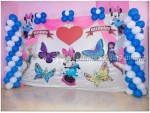 Minnie And Butterfly Theme Decoration